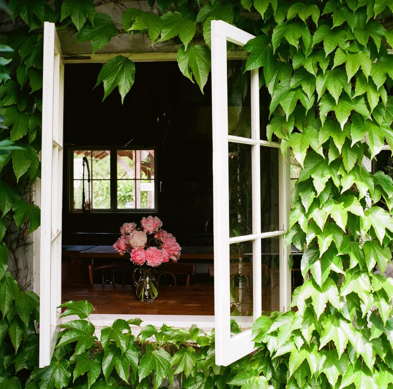 August 4 - Creating a Garden Inspired Floral Arrangement with Nisha Klein