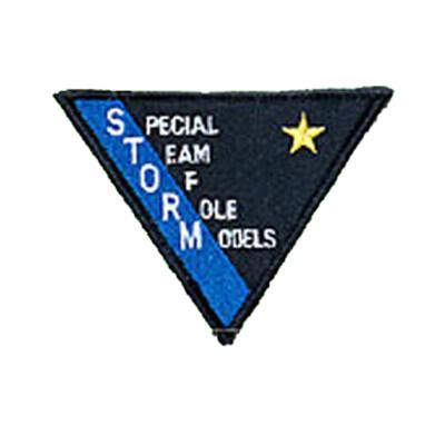 Patch, Team, Triangular, STORM
