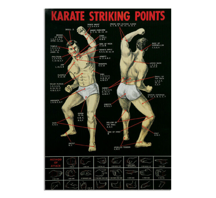 Karate Striking Points Poster