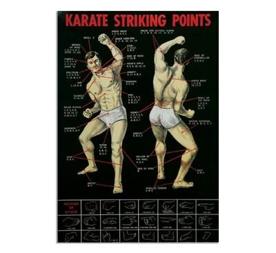 Karate Striking Points Poster