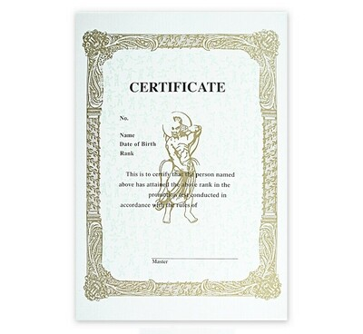 Rank Certificate, Any Martial Arts