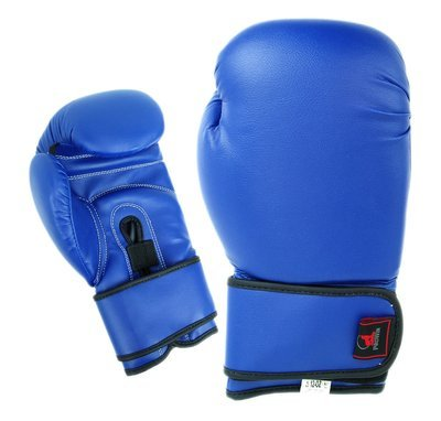 Boxing Gloves, Vinyl, Blue