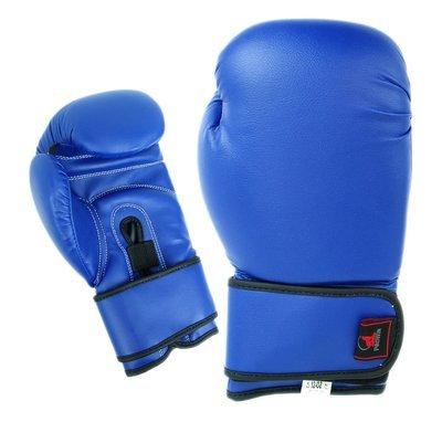 Boxing Gloves, Vinyl, Blue
