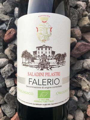 Falerio, Saladini Pilastri DOC 2019