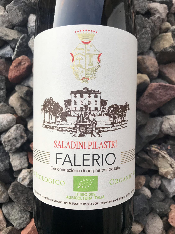Falerio DOC Saladini Pilastri 2019