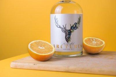 Arcturus Torridon Gin
