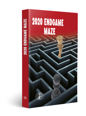 Endgame Maze 2020