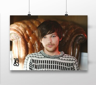 Louis Tomlinson poster 6