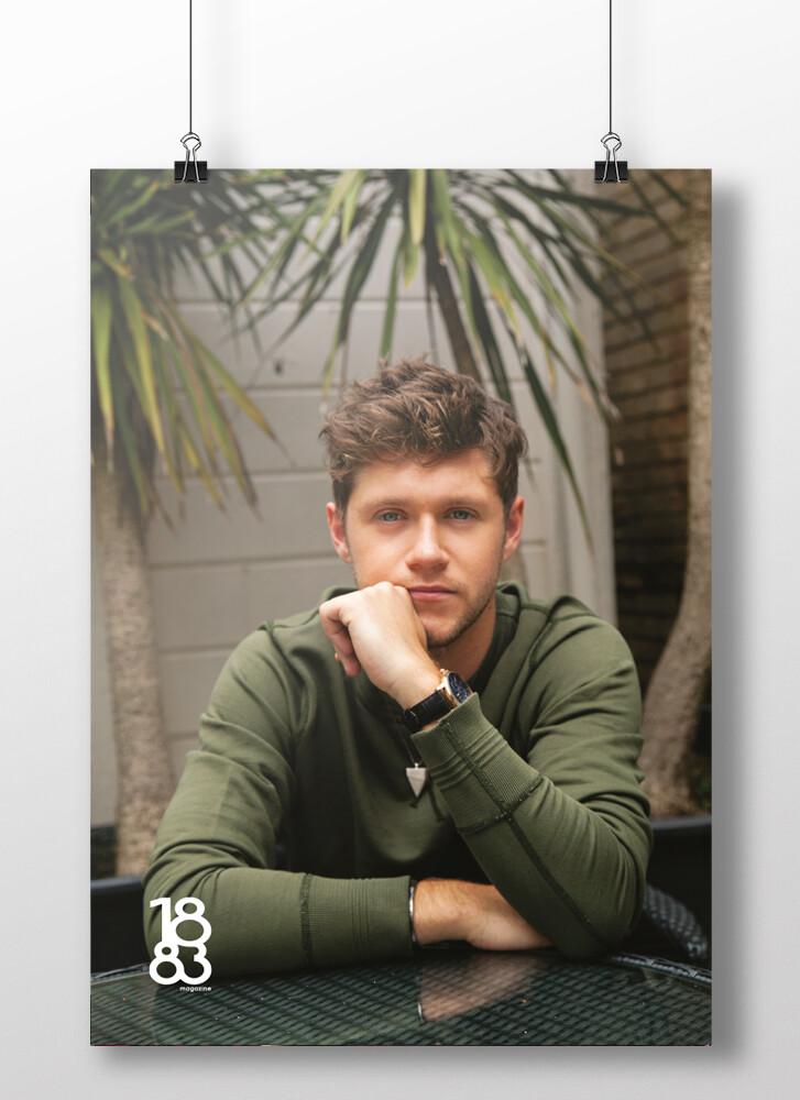 Niall Horan poster 2