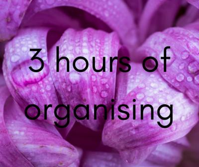 3 hour organising session