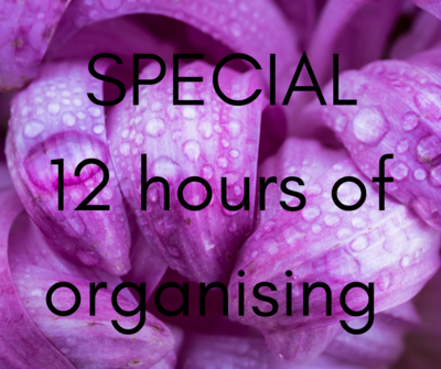 SPECIAL 12 hour organising package (save $170)