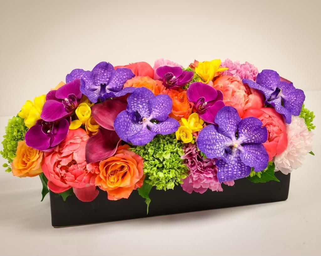 Bright Blooms XL