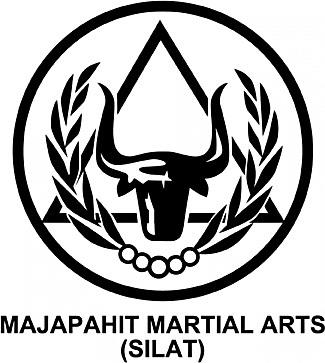 Mixed Martial Arts Program