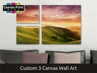 Canvas Wall Art | Covers Three Canvases
