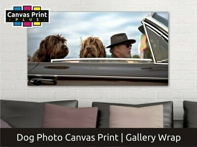 Dogs & Puppy Photo Canvas   Gallery Wrap