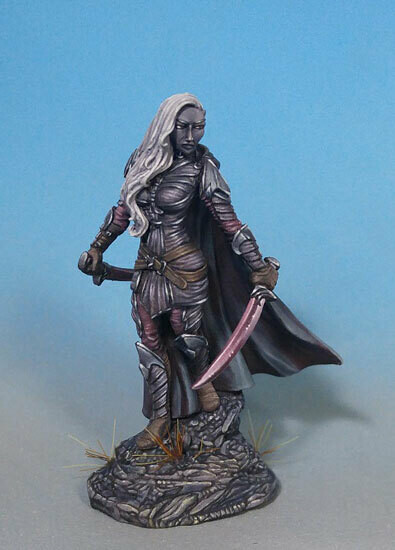 Visions in Fantasy: Female Dark Elf Warrior Dual Wield