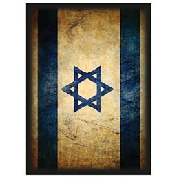 Max Protection Shuffle-Tech Image Card Sleeves (Standard; 50/pk): Israel Flag