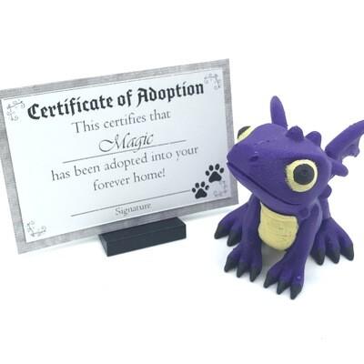Adopt a Baby Dragon - Magic