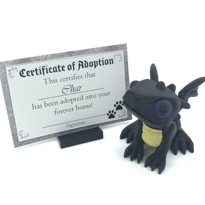 Adopt a Baby Dragon - Char