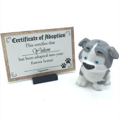 Adopt a puppy - Yukon
