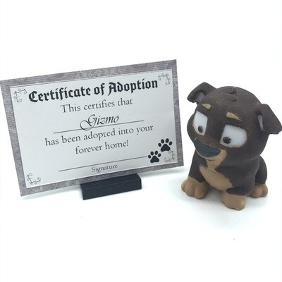 Adopt a puppy - Gizmo