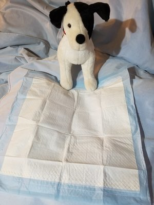 """Gardner Disposable Potty Pads 21"""" x 21"""" 150 Count **Picture is for Representation Purposes ONLY**"""