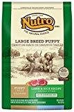 Nutro Wholesome Essentials Grain Free Large Breed Pasture-Fed Lamb & Rice Dry Dog Food 30 lbs. (2/19) (A.P1)