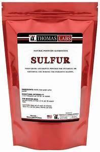 **SALE** Thomas Labs Sulfur Powder (16 oz) (7/15)