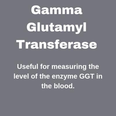 GGT- Gamma Glutamyl Transferase