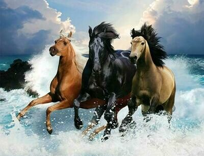 3 Horses Splashing - Full Drill Diamond Painting - Specially ordered for you. Delivery is approximately 4 - 6 weeks.