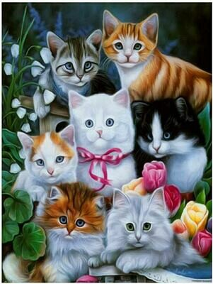 7 Cats - Full Drill Diamond Painting - Specially ordered for you. Delivery is approximately 4 - 6 weeks.