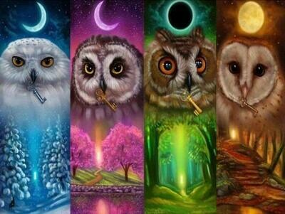 4 Seasons Owls - Full Drill Diamond Painting - Specially ordered for you. Delivery is approximately 4 - 6 weeks.