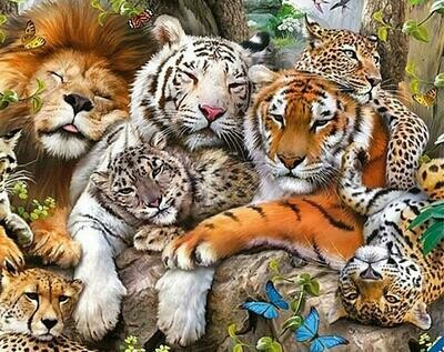 All the big cats - Full Drill Diamond Painting - Specially ordered for you. Delivery is approximately 4 - 6 weeks.