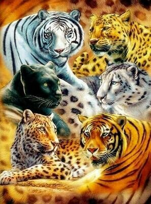 Big Cats - Full Drill Diamond Painting - Specially ordered for you. Delivery is approximately 4 - 6 weeks.