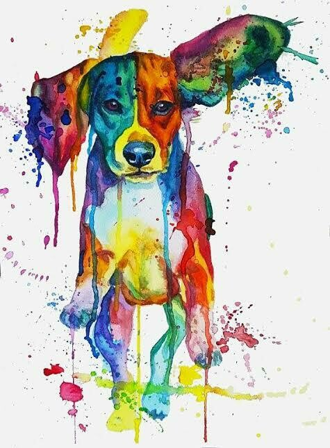 Colourful Dog 09   - Full Drill Diamond Painting - Specially ordered for you. Delivery is approximately 4 - 6 weeks.