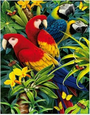 Colourful Parrots - Full Drill Diamond Painting - Specially ordered for you. Delivery is approximately 4 - 6 weeks.