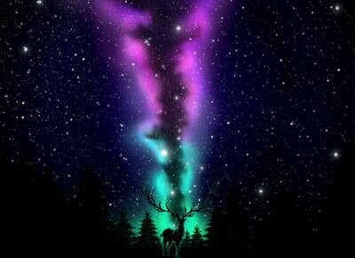 Deer With Northern Lights - Full Drill Diamond Painting - Specially ordered for you. Delivery is approximately 4 - 6 weeks.