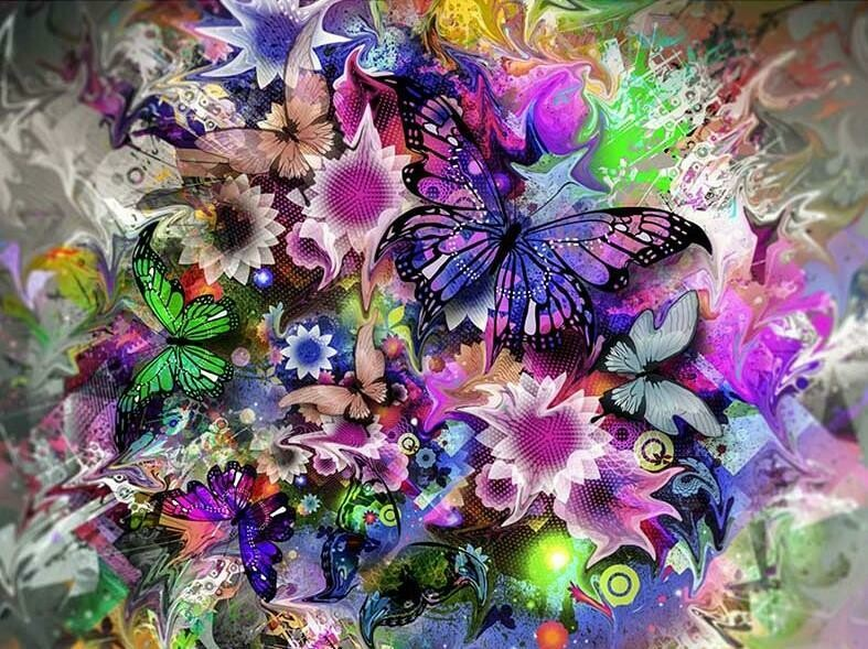 Butterfly Frenzy - Full Drill Diamond Painting - Specially ordered for you. Delivery is approximately 4 - 6 weeks.