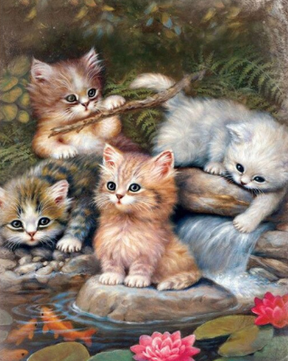 Cats At The Pond - Full Drill Diamond Painting - Specially ordered for you. Delivery is approximately 4 - 6 weeks.