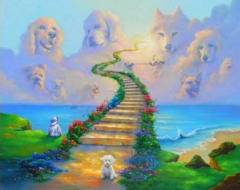 Dog Heaven - Full Drill Diamond Painting - Specially ordered for you. Delivery is approximately 4 - 6 weeks.