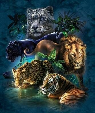 Animal Waterhole 50x60 - Full Drill (Square) - Diamond Painting Kit - Currently in stock