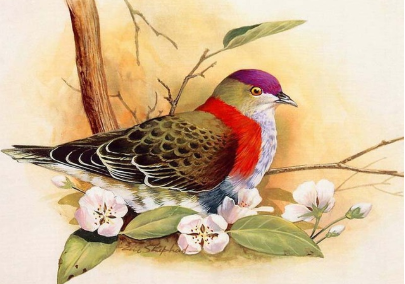 Birds 12- Full Drill Diamond Painting - Specially ordered for you. Delivery is approximately 4 - 6 weeks.