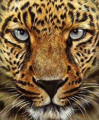 Cheetah Face - Full Drill Diamond Painting - Specially ordered for you. Delivery is approximately 4 - 6 weeks.