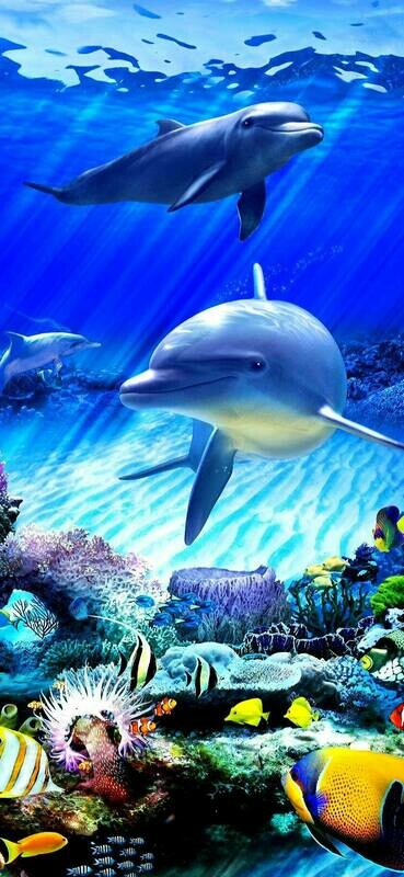 Dolphins 02 - Full Drill Diamond Painting - Specially ordered for you. Delivery is approximately 4 - 6 weeks.