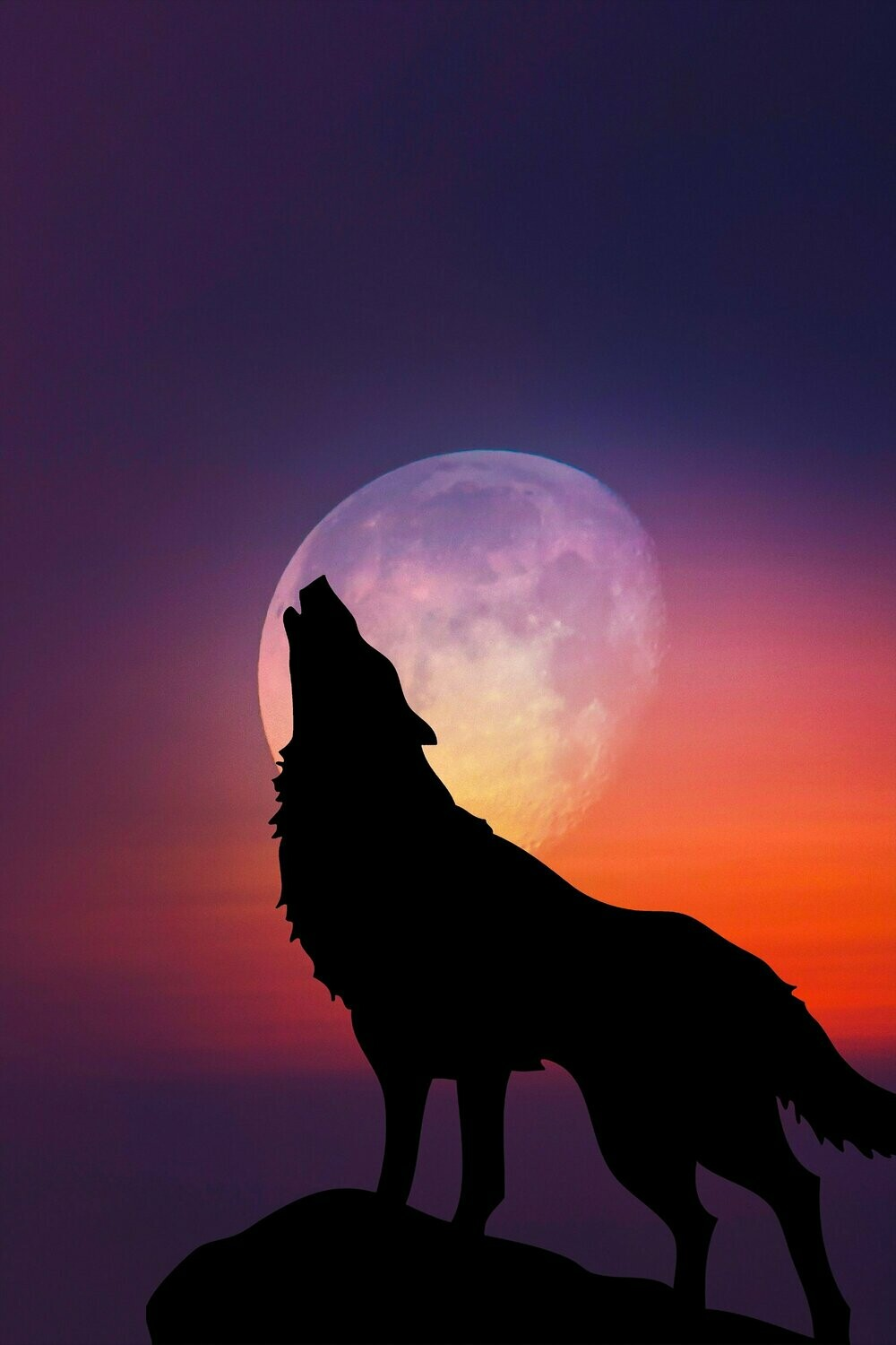 Howl Moon - Full Drill Diamond Painting - Specially ordered for you. Delivery is approximately 4 - 6 weeks.