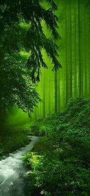 Green Forest - Full Drill Diamond Painting - Specially ordered for you. Delivery is approximately 4 - 6 weeks.