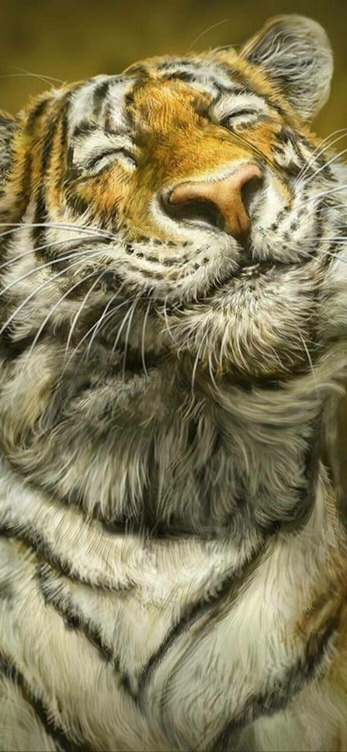 Happy Happy Tiger  - Full Drill Diamond Painting - Specially ordered for you. Delivery is approximately 4 - 6 weeks.