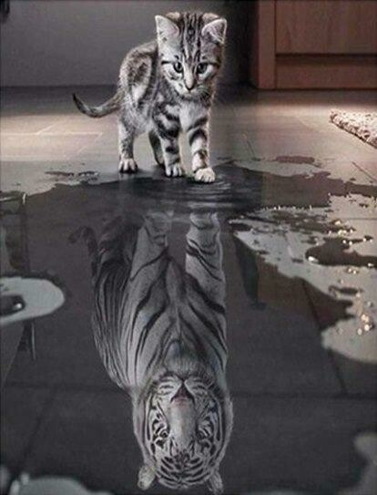 Kitten Reflection 2 - Full Drill Diamond Painting - Specially ordered for you. Delivery is approximately 4 - 6 weeks.