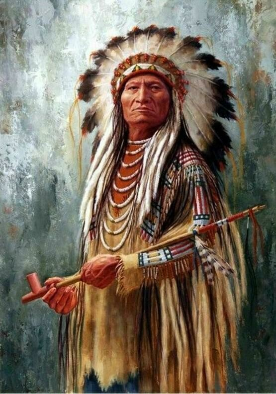 Native American 05 - Full Drill Diamond Painting - Specially ordered for you. Delivery is approximately 4 - 6 weeks.