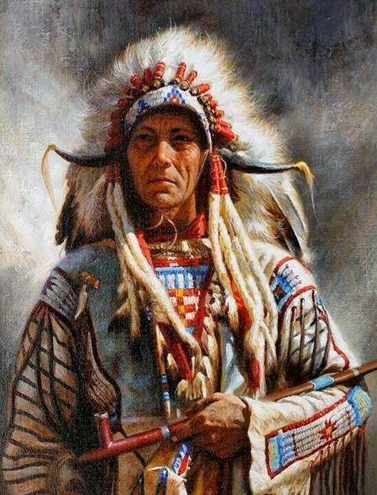 Native American 17 - Full Drill Diamond Painting - Specially ordered for you. Delivery is approximately 4 - 6 weeks.